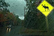 Vereinigte Staaten von Amerika, USA, 2001: Auf der Liliy Bay Road zwischen Greenville und Kokajo während eines heftigen Regenschauers, die Sicht ist extrem schlecht. Diese Straße wird häufig von Elchen überquert. Deshalb ermahnt ein Schild die Autofahrer zur erhöhten Aufmerksamkeit. | United States of America, USA, 2001: On the Lily Bay Road between Greenville and Kokajo during heavy rainfall, moose often crossing this road, extreme bad sight because of the weather conditions, moose post on the side of the road, view out of a car, Greenville, Maine. |