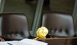 14.05.2013, Parlament, Wien, AUT, Parlament, 202. Nationalratssitzung, Sondersitzung des Nationalrates, auf Verlangen von FPOe an den Umwelt- und Landwirtschaftsminister zum Thema Bienensterben. im Bild Biene Maya im Nationalrat // Maya the Bee during the 202nd meeting of the national assembly of austria, austrian parliament, Vienna, Austria on 2013/05/14, EXPA Pictures © 2013, PhotoCredit: EXPA/ Michael Gruber