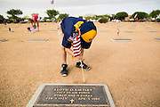 26 MAY 2012 - PHOENIX, AZ: A Cub Scout places an American flag on a veterans' grave at the National Memorial Cemetery in Phoenix, AZ, Saturday. Hundreds of Boy and Girl Scouts along with the Young Marines, a Scout like organization, place American flags on veterans' graves in the National Memorial Cemetery in Phoenix every year on the Saturday before Memorial Day.     PHOTO BY JACK KURTZ