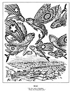 """SEAC. """"On the road to Mandalay, where the flying-fishes play."""""""