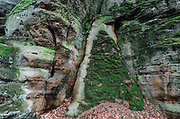 Sandstone Wall Pattern, Mullerthal trail, Mullerthal, Luxembourg