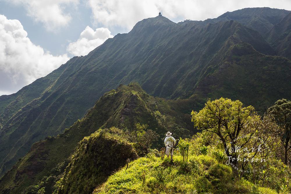 Hiker on the Moanalua Saddle, overlooking Haiku Valley, Oahu, Hawaii