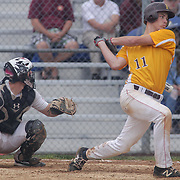 St. Elizabeth Nathan	Thomas (11) in action at the plate in the mist of the second round of the DIAA baseball state tournament between#4 Caravel Academy and #15 St. Elizabeth Saturday May 27, 2017, at Caravel Academy in Bear Delaware.