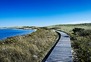Walking path through Long Point Wildlife Refuge, West Tisbury, Martha's Vineyard, Massachusetts, USA.