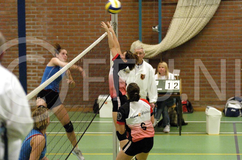 061111,lemelerveld,nederland,<br /> volleybal. de bevers tegen Olympia.<br /> spelverdeler van de bevers.<br /> fotografiefrankuijlenbroek&copy;2006sanderuijlenbroek
