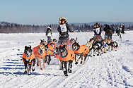 Mushers Martin Buser and Roger Lee competing in the 45rd Iditarod Trail Sled Dog Race on the Chena River after leaving the restart in Fairbanks in Interior Alaska.  Morning.  Winter.