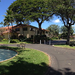 Max at Puamana (Panorama), Lahaina, Maui, Hawaii, US