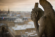 Stone gargoyle with horns, perched on a corner of the cathedral of Notre Dame, peering over the city of Paris.