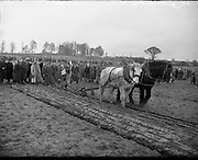 Queen of the Plough contest at the National Ploughing Championship, Kilkenny .29/01/1959 .