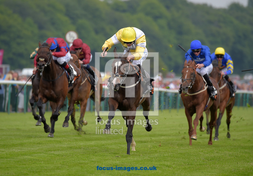 A preview of this weekend's favourites in UK racing.<br /> Picture by Martin Lynch/Focus Images Ltd 07501333150<br /> 13/10/2016<br /> <br /> <br /> Original Caption:<br /> Quiet Reflection with D Costelllo wins Sandy Lane Stakes at Haydock 28-5-16.