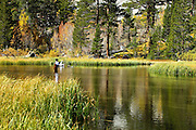 Fly Fishing in the High Sierras