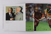 Legendary goalkeepers, Tipperary's Tony Reddan and Galway's Sean Duggan.