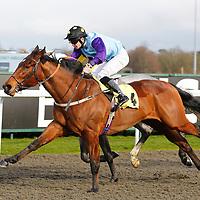 Dream Ruler and Fergus Sweeney winning the 3.10 race