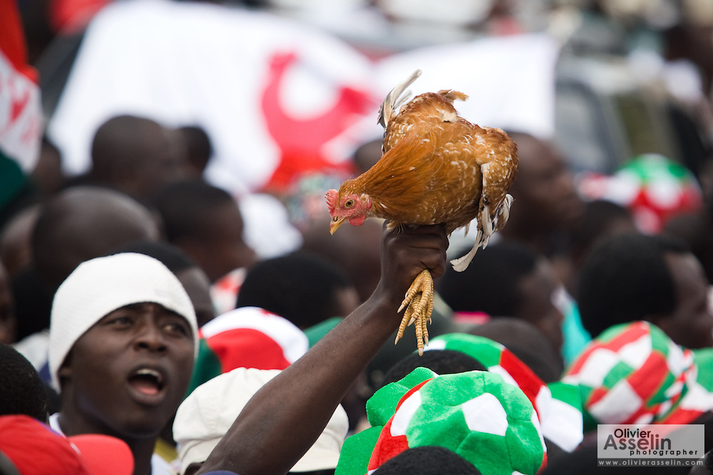 Convention People's Party (CPP) supporters hold up a live chicken during a rally in Accra, Ghana on Sunday September 21, 2008. The official symbol of the CPP is a rooster.