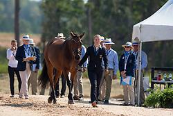 Harm Mareike, GER, Amicello, Luxus Boy, Racciano, Sunfire, Zazou<br /> World Equestrian Games - Tryon 2018<br /> © Hippo Foto - Sharon Vandeput<br /> 20/09/2018