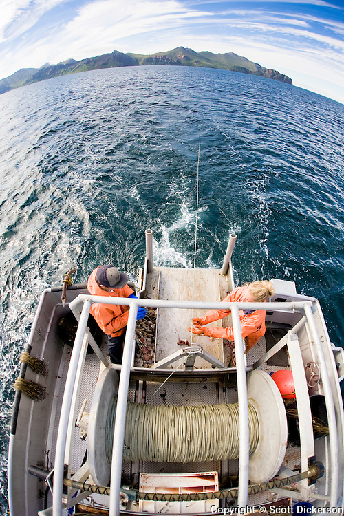 Keith Bell and Emma Teal Laukitis snap hooks onto the groundline while setting out commercial halibut fishing longline gear in the Aleutian Islands, Alaska.