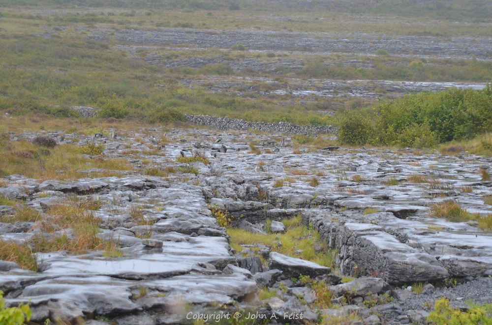 The Burren is a unique area of Ireland.  There are rocks everywhere and very little fertile soil. The plant life here is different from anywhere else in the country. County Clare, Ireland