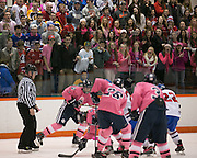 Fairport fans cheer during a game against Pittsford at RIT on Saturday, January 24, 2015.