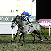 Crew Cut and R Winston winning the 7.30 race