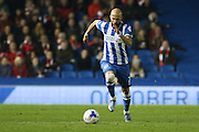 Brighton defender, Bruno Saltor (2) on the ball during the Sky Bet Championship match between Brighton and Hove Albion and Bristol City at the American Express Community Stadium, Brighton and Hove, England on 20 October 2015. Photo by Phil Duncan.