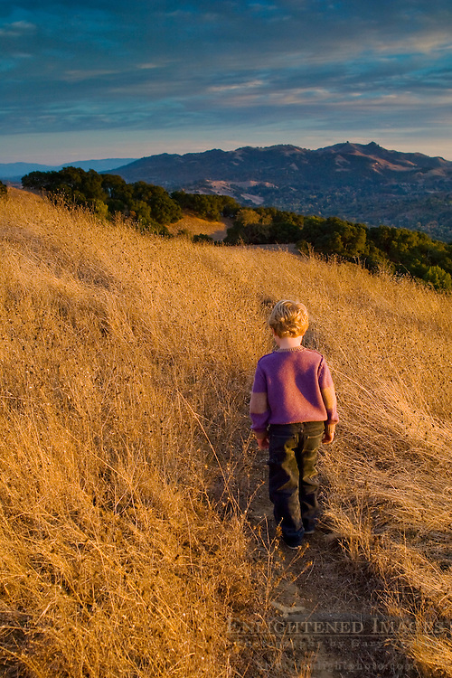 Young boy on hiking trail at sunset, Briones Regional Park, Contra Costa County, California