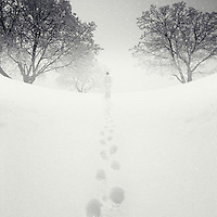 A lone male figure standing in snow in the distance facing away from the camera near trees