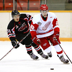 PICKERING, ON - Nov 22 : Ontario Junior Hockey League Game Action between the Hamilton Red Wings and the Pickering Panthers, Josh LaFrance #88 of the Hamilton Redwings Hockey Club skates with the puck.<br /> (Photo by Brian Watts / OJHL Images)