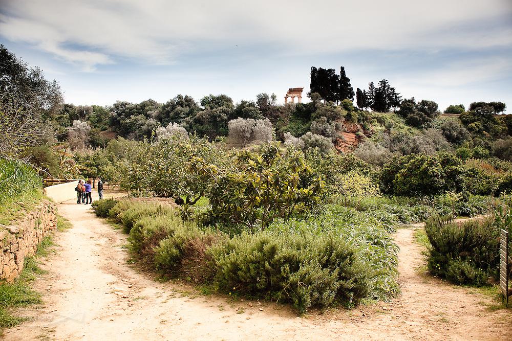 Agrigento, Valle dei Templi. Il Giardino della Kolymbetra. Proprietà FAI. ©2012 Vince Cammarata | FOS