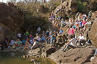The Festival of the Sun and  Rebirth was celebrated in the unusual ,natural setting of El Charco's Canyon in San Miguel de Allende Mexico.During the festival, Dr.Tsalka performed a  piano concert playing works by Mozart,Schubert,Chopin,Liszt,Ullmann and Eric Satie.