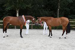 074, Hufonia, 084, Hesdita<br /> Nationale merriekeuring, Finale 3 jarige springhengsten<br /> KWPN Paardendagen Ermelo 2015<br /> © Hippo Foto - Dirk Caremans