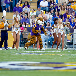 October 16, 2010; Baton Rouge, LA, USA;  The LSU Tigers band along with mascot Mike the Tiger and the Golden Girls dancers perform prior to kickoff against the McNeese State Cowboys at Tiger Stadium. LSU defeated McNeese State 32-10. Mandatory Credit: Derick E. Hingle