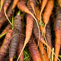 Farmers Markets: The Food