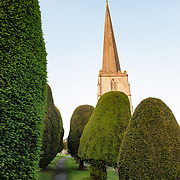 Path and Yew trees at the Parish Church of St Mary in Painswick, Gloucestershire, in England's Cotswolds region.