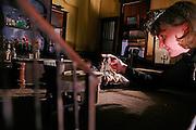 Berlin, Hochschule fur film und fernsehen Konrad Wolf, The Film & Television Academy (HFF) ?Konrad Wolf?, , Saskia Hoffmann, lavora da 5 anni al suo film d'animazione. le scenografie e i pupazzi sono realizzate da lei....Berlin, Hochschule fur film und fernsehen Konrad Wolf, The Film & Television Academy (HFF) ?Konrad Wolf , Saskia Hoffman has been working for 5 years on her animation movie, both scenography and puppets are handmade by her.