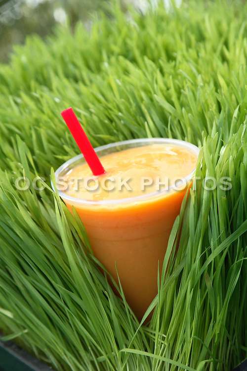 Smoothie In Wheatgrass