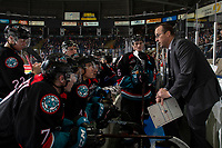 KELOWNA, CANADA - DECEMBER 1:  Kelowna Rockets' assistant coach Kris Mallette stands on the bench against the Saskatoon Blades on December 1, 2018 at Prospera Place in Kelowna, British Columbia, Canada.  (Photo by Marissa Baecker/Shoot the Breeze)