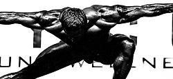 17.11.2013, VAZ, St. Poelten, AUT, IFBB, Classic Bodybuilding Weltmeisterschaft, im Bild Bodybuilderfeature // during the IFBB Classicbodybuilding Championship, Austria 2013/11/17. EXPA Pictures © 2013, PhotoCredit: EXPA/ Sascha Trimmel
