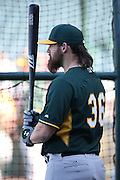 ANAHEIM, CA - AUGUST 29:  Derek Norris #36 of the Oakland Athletics looks on during batting practice before the game against the Los Angeles Angels of Anaheim at Angel Stadium on Saturday, August 30, 2014 in Anaheim, California. The Angels won the game in a 2-0 shutout. (Photo by Paul Spinelli/MLB Photos via Getty Images) *** Local Caption *** Derek Norris
