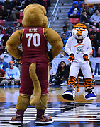 SAN DIEGO, CA - MARCH 16:  Auburn Tigers mascot Aubie performs as Charleston Cougars mascot Clyde looks on during a first round game of the Men's NCAA Basketball Tournament at Viejas Arena in San Diego, California. Auburn won 62-58.  (Photo by Sam Wasson)