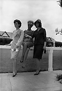 4/8/1964<br /> 8/4/1964<br /> 8 August 1964<br /> <br /> Olive Clancy, Theresceline Rowsome and Olive Sherlock take in the view at R.D.S
