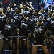 Appoquinimink cheerleading squad performs a routine in the stands in the course of a time-out in the first half of a regular season basketball game between St. Georges Tech and Appoquinimink Monday, Feb. 22, 2016, at St. Georges Tech in Middletown.