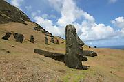 Rano Raku, Moai (Statue) quarry,Easter Island (Rapa Nui), Chile<br />
