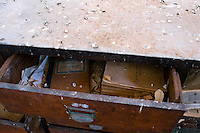 Il complesso produttivo delle saline è situato nel comune italiano di Margherita di Savoia (nome dato dagli abitanti in onore alla regina d'Italia che molto si adoperò nei confronti dei salinieri) nella provincia di Barletta-Andria-Trani in Puglia. Sono le più grandi d'Europa e le seconde nel mondo, in grado di produrre circa la metà del sale marino nazionale (500.000 di tonnellate annue).All'interno dei suoi bacini si sono insediate popolazioni di uccelli migratori e non, divenuti stanziali quali il fenicottero rosa, airone cenerino, garzetta, avocetta, cavaliere d'Italia, chiurlo, chiurlotello, fischione, volpoca..Particolare di un cassetto di uno schedario con vecchia documentazione.
