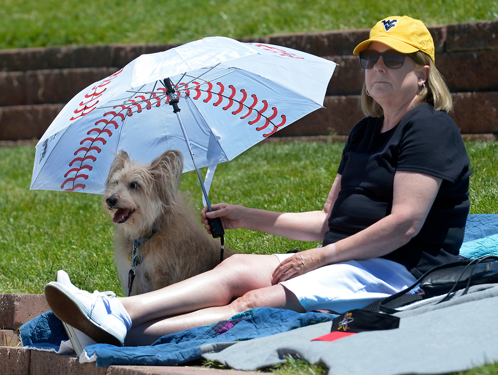 gbs052117i/SPORTS -- Sue Holmes of Albuquerque holds an Isotopes umbrella over her brother's dog, Scrappy, in the Bark in the Park event during the game in Isotopes Park on Sunday, May 21, 2017. (Greg Sorber/Albuquerque Journal)