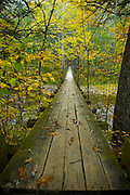 suspension bridge, fall foliage, woodland scene