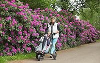LOCHEM -  Rododendrons .  Lochemse Golf- & Countryclub 'De Graafschap. COPYRIGHT KOEN SUYK