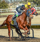 Nebraska Horse Racing