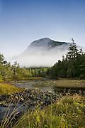 Meandering Stream, British Columbia - Canada