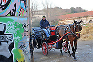 Roma, 18/01/2011: le carrozzelle tornano alle stalle del Campo Boario - horses coach go back to the stables
