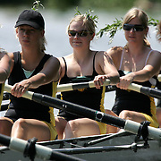 CAMBRIDGE UNIVERSITY STUDENTS ON THE RIVER CAM ROWING THE ''CAMBRIDGE BUMPS''..The Bumps are a historic form of racing between the Cambridge University college boat clubs, and run to a format dating back to the 1820s . Divisions of 17 or 18 crews line up along the river, with just one-and-a-half boat lengths (90 feet) between each. At the firing of a small cannon,   each crew tries to catch up with and actually collide with (bump) the crew in front before the crew behind does the same to them!.The races are held one each day for four days and by bumping on any given day, a crew moves up a place on the river for the following day's race. For any given crew, the aim is to go up four places on the river during the course of the four day's racing.The winning team traditionaly wear a branch to show that they have won